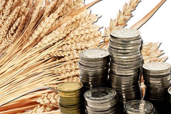 Банк России совершенствует регулирование деятельности сельскохозяйственных кредитных потребительских кооперативов