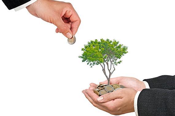 МФО увеличили кредитование малого и среднего бизнеса